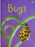 Bugs - Lucy Bowman