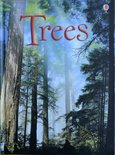 Trees - Lisa Jane Gillespie