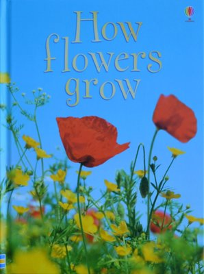 How Flowers Grow - Emma Helbrough