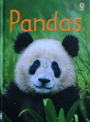 Pandas - James Maclaine