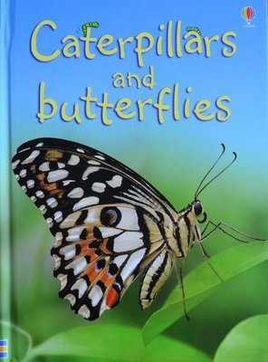 Caterpillars and Butterflies - Stephanie Turnbull