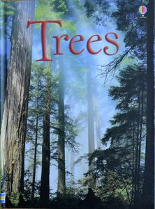 Trees - Lisa Jane Gillespie